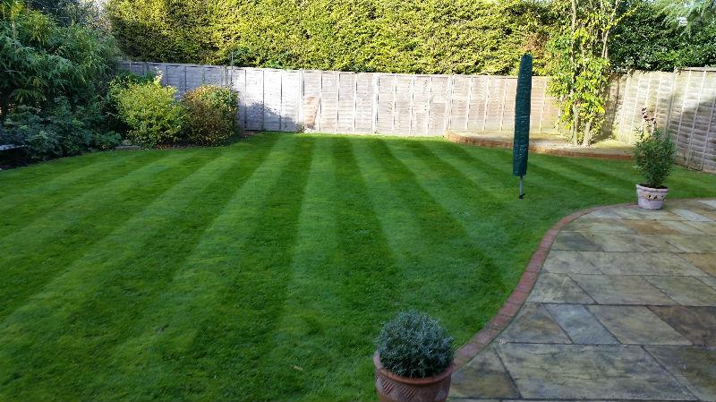 Garden Services Wendens Ambo