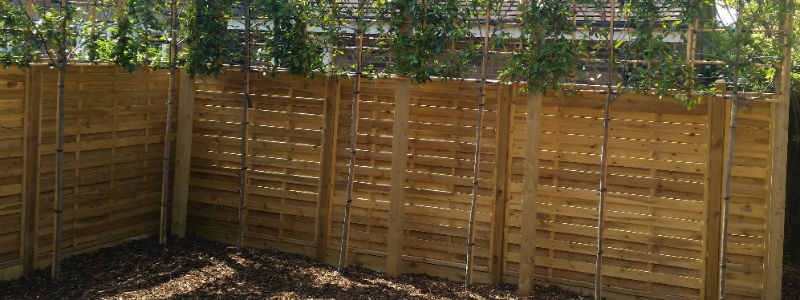 boundary fencing saffron walden cambridge bishops stortford